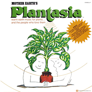 plant300